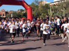 Wildcat Marathoner's Fun-run